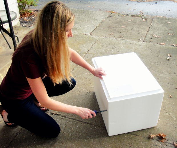 Cutting the styrofoam cooler 2